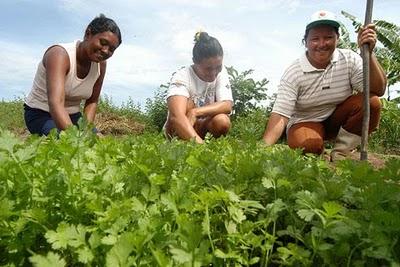 O Ministério do Desenvolvimento Agrário (MDA) prorrogou até o dia 30 de dezembro, o prazo para o cadastramento dos agricultores familiares no Programa Garantia-Safra para o ano de 2013