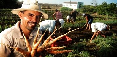 Em 2012, foram assinados no Ceará 117.478 contratos de Pronaf