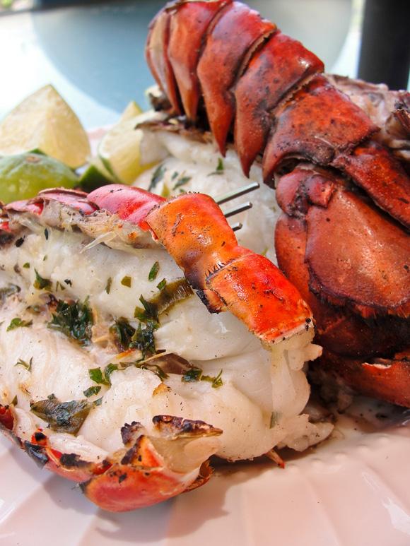 Fornecedores comercializam o pescado a partir de R$ 50 o quilo. FOTO: Creative Commons