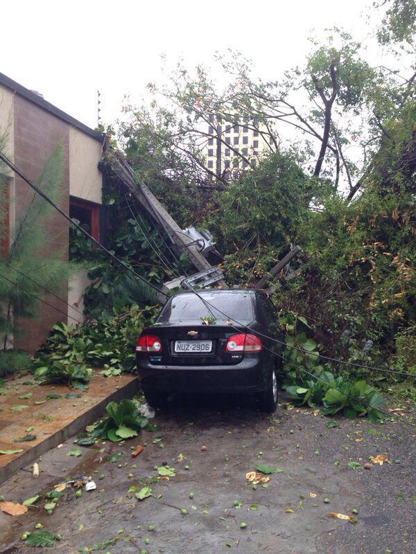 Árvore atingiu um poste e deixou a região sem energia (FOTO: Hugo Lopes)