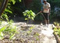 """""""O horto é bom porque tira uns pensamentos ruins"""", confessa Francisco André de Sousa, de 29 anos, beneficiado pelo projeto (FOTO: Roberta Tavares/Tribuna do Ceará)"""