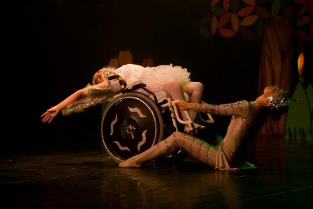 Companhia reúne fisioterapia e dança para integrar pessoas com deficiência (FOTO: Reprodução Facebook)