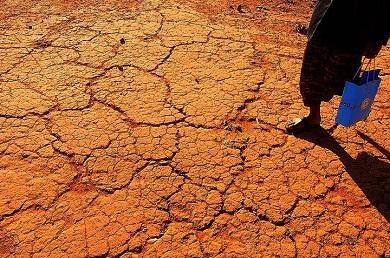 No momento, 96% dos municípios cearenses estão em situação de emergência em virtude da seca (Foto: Divulgação)