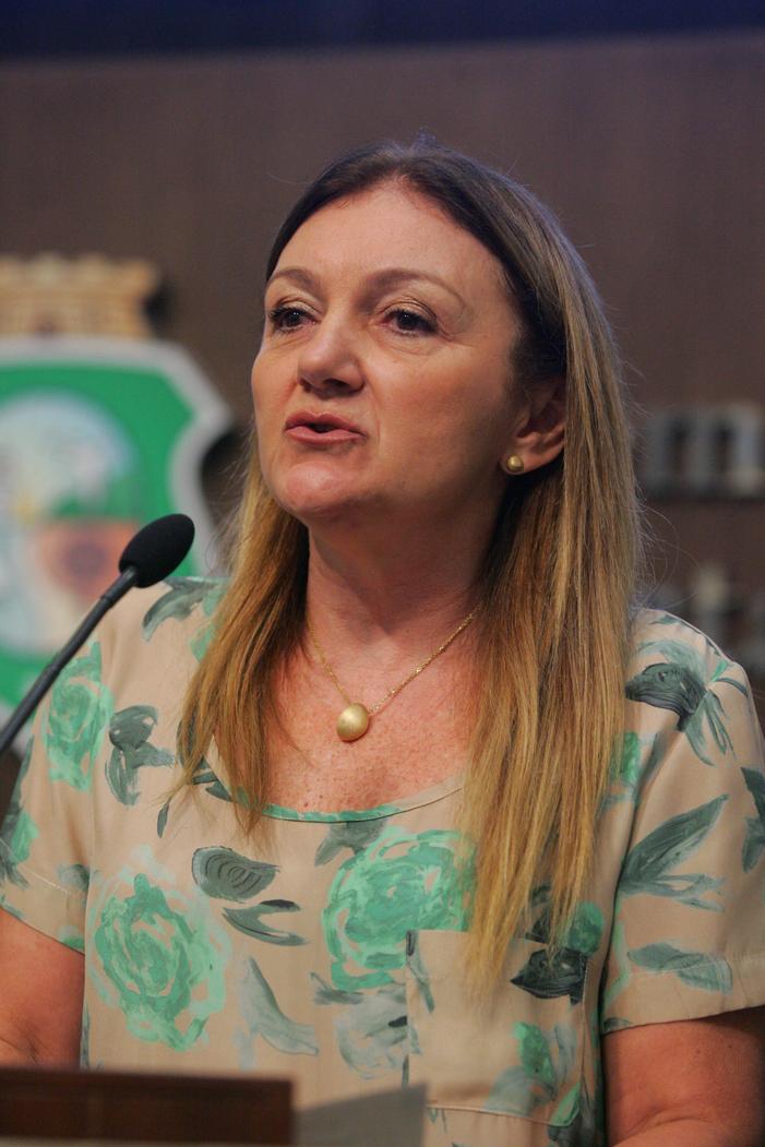 Inês Arruda (PMDB)
