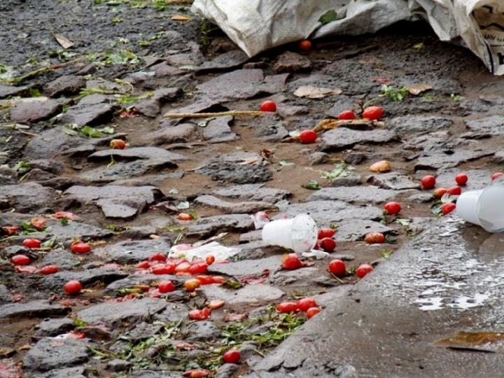 Estudantes pesquisam importância do tomate