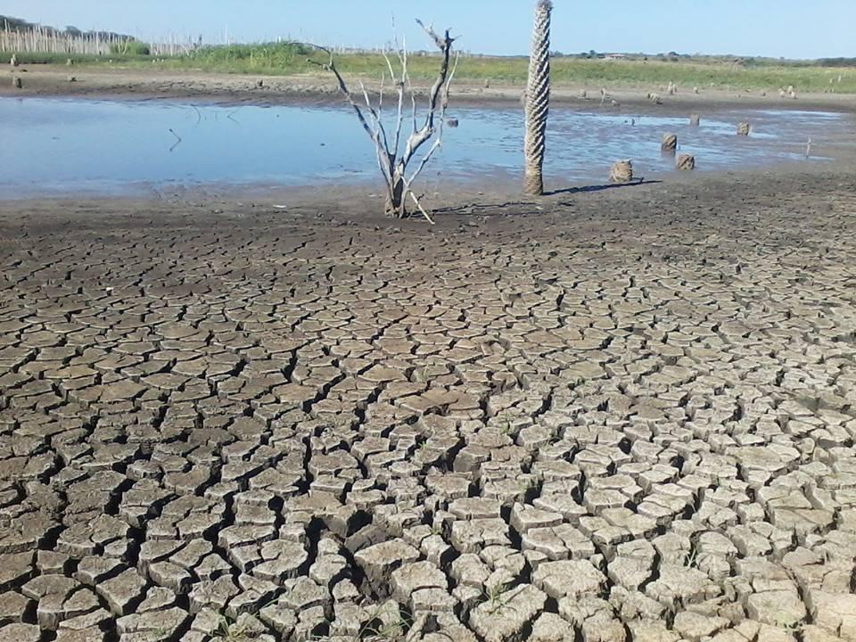Seca castiga municípios cearenses e Crateús enfrenta colapso de água (FOTO: Reprodução)