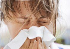 Gripe e H1N1 têm sintomas parecidos, mas conhecer a diferença é essencial para tratamento eficaz (FOTO: Divulgação)