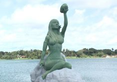 Bairro é conhecido pela lagoa logo na entrada (FOTO: Reprodução TV Jangadeiro)