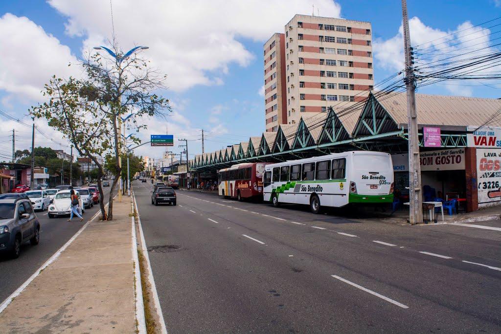 Ciclofaixa deve ser implantada na Avenida Domingos Olímpio a partir de junho
