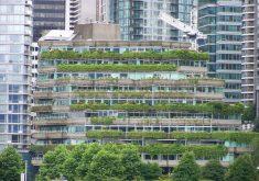 A iniciativa já existe em países desenvolvidos, como o Canadá. (FOTO: Flickr/ Creative Commons/ NNECAPA Photo Library)