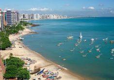 Nas áreas com maior número de atividades, como Fortaleza, constatou-se um menor número de espécies (FOTO: Divulgação)