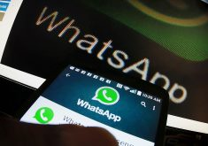 whatsapp-eleições