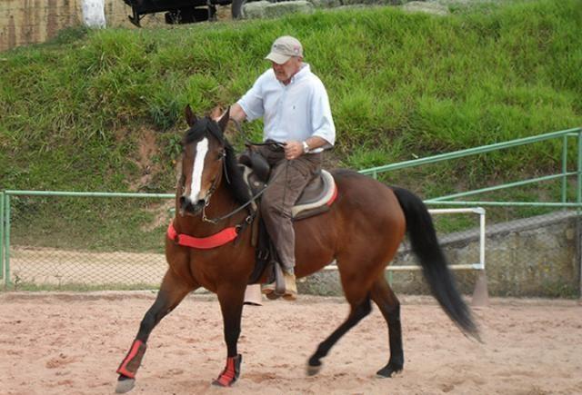 Alunos do IFCE criam nova forma de domar cavalos sem uso de força