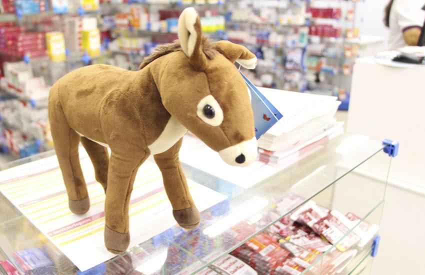Jumentinho é um dos animais mais vendidos em ação de bonecos de pelúcia de farmácia