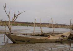 Estado enfrenta mais um ano de seca (FOTO: Arquivo/Tribuna do Ceará)