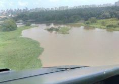 As buscas se concentram no parque no mato do Rio Cocó (FOTO: Reprodução)