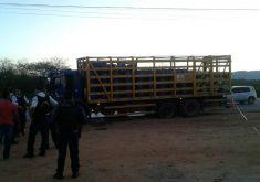 O caso aconteceu na CE-060 (FOTO: Divulgação)