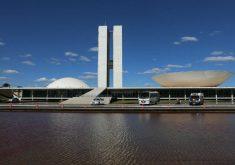 O projeto é da senadora Maria do Carmo Alves (FOTO: Divulgação)