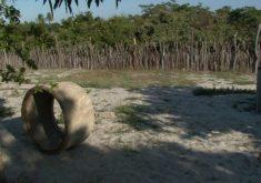 Ele foi enterrado dentro do terreno de casa (FOTO: Reprodução/TV Jangadeiro)