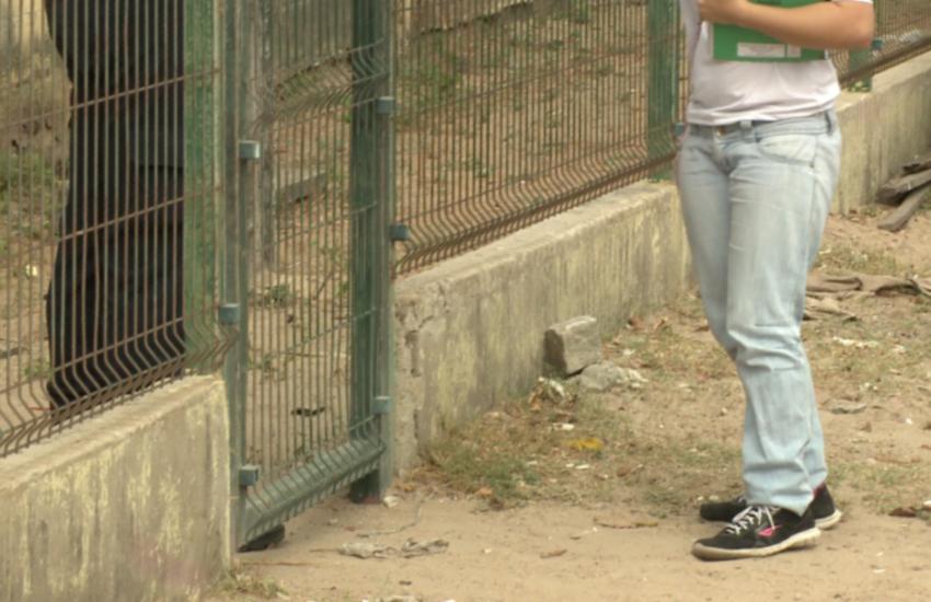 Alunos de escola do Pirambu pedem socorro por medo de guerra entre facções