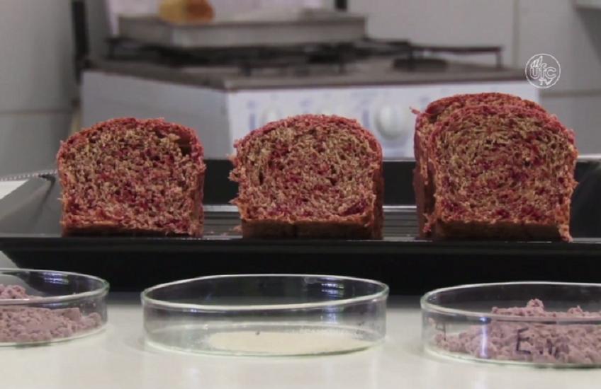 Pão de açaí criado em universidade cearense é premiado internacionalmente