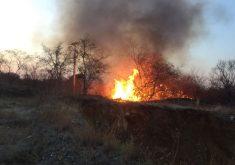 Há 4 dias acontece um incêndio no Iguatu (FOTO: Divulgação)