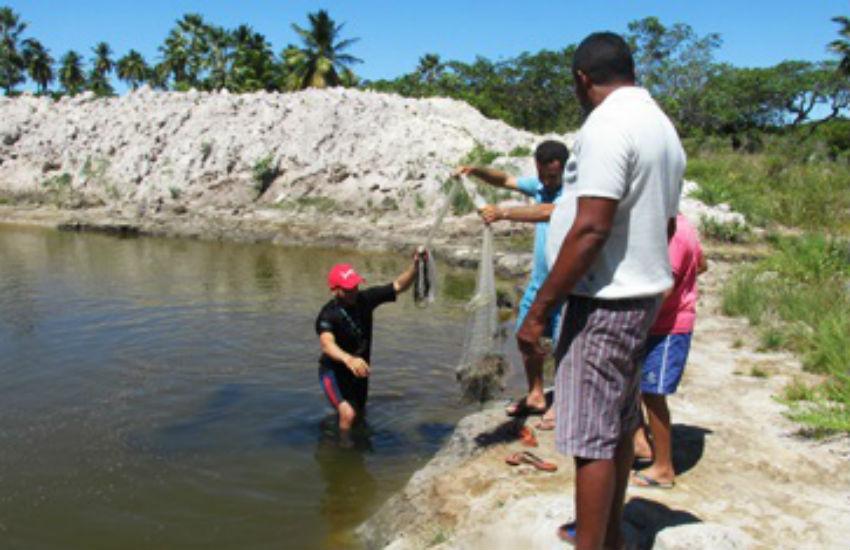 Projeto do IFCE cria peixes em água que seria descartada