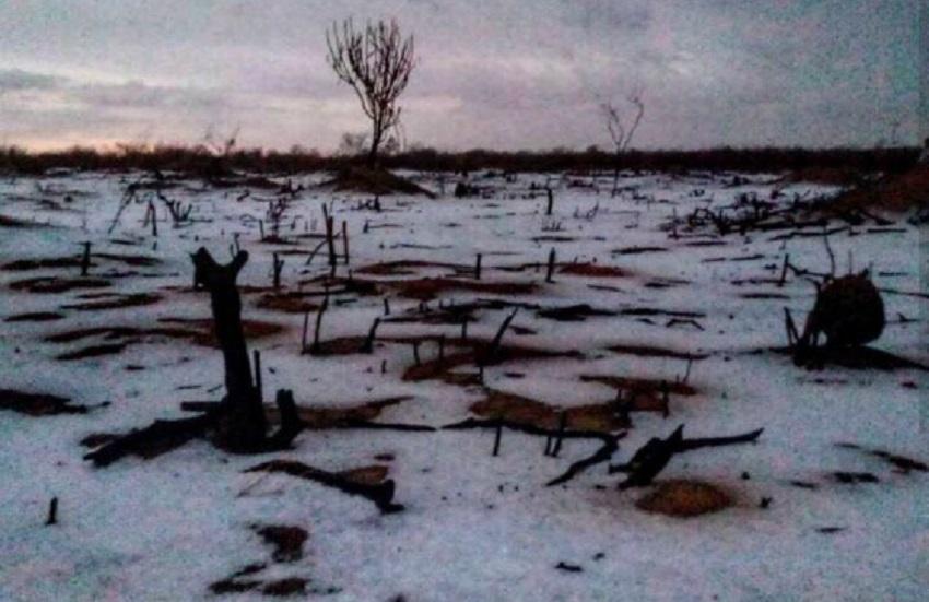 As 8 melhores reações no dia em que choveu gelo na região mais seca do Ceará