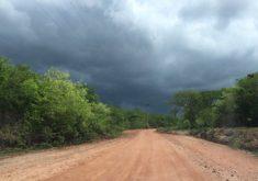 Ceará está na pré-estação chuvosa. (Foto: Tribuna do Ceará/Arquivo)