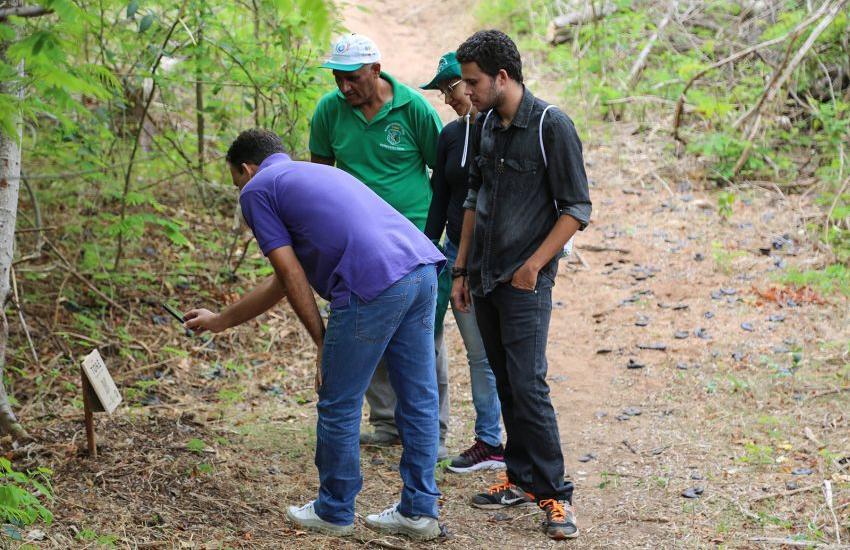 Aplicativo criado por estudantes mapeia a flora de parque estadual no Crato