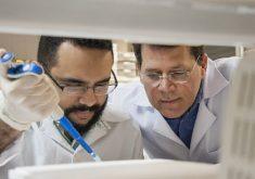 Dois homens cientistas fazendo referência a pesquisa desenvolvida em laboratório