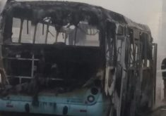 12 ônibus já foram incendiados por bandidos. (Foto: Reprodução)