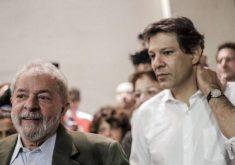 O possível candidato alternativo do PT, Fernando Haddad, fica com 3% dos votos de Lula, segundo CNI. (Foto: Reprodução/Mídia Ninja)