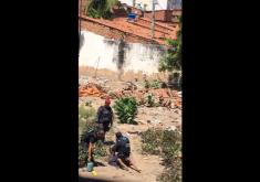 Terreno em referência a Vídeo flagra policiais torturando suposto bandido em terreno baldio