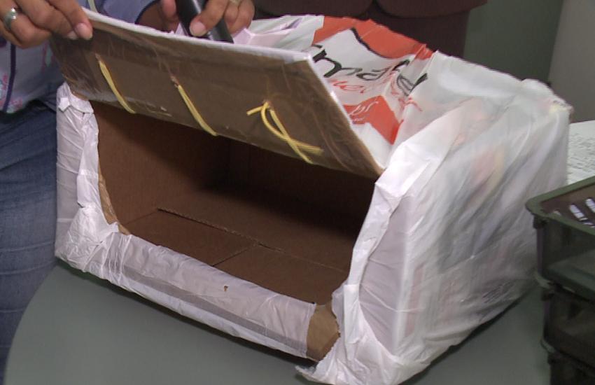 Ladrões usam sacola com caixa de fundo falso para furtar loja de Fortaleza