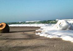 Praia em referência a Pordunas e Beach Park realizam limpeza na praia do Porto das Dunas em comemoração ao dia mundial da limpeza