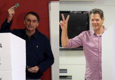 Bolsonaro e Haddad em referência a Jair Bolsonaro e Fernando Haddad disputam 2º turno das eleições neste domingo