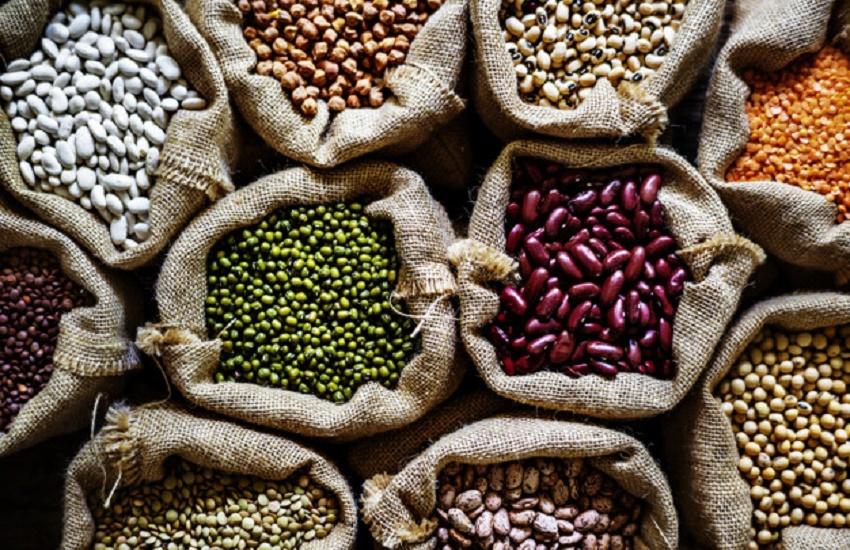 Fortaleza recebe feira gratuita de exposição e comercialização de sementes e frutas