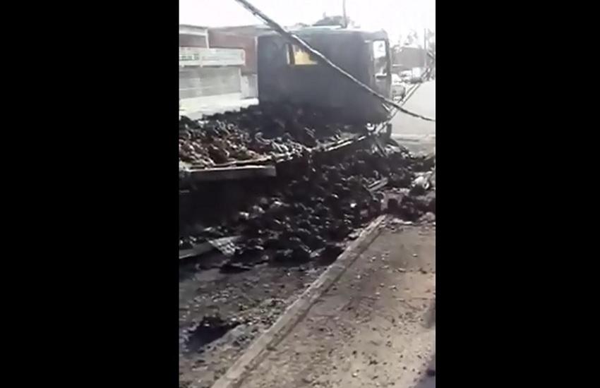 2 mil frangos são queimados vivos após incêndio de caminhão