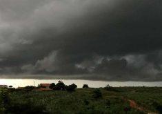 O Ceará tem tido um ano com boa marca de chuvas (FOTO: Marciel Bezerra/Funceme)