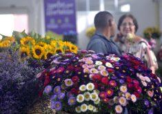 O Mercado das Flores funciona de terça a sábado (FOTO: Thiara Montefusco/ Governo do Ceará)