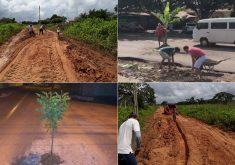 Os casos aconteceram em várias cidades do Ceará (FOTO: Márcio Alexandre Reprodução/ Whatsapp)