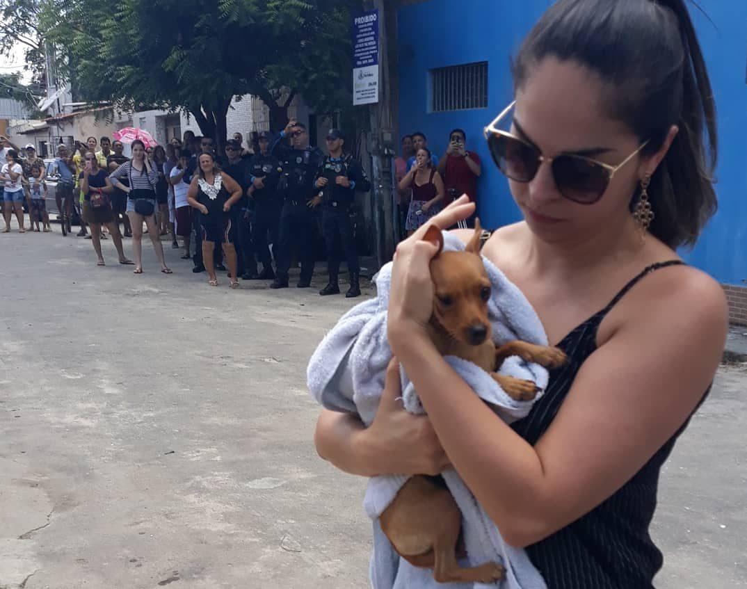 Cachorro é resgatado após ficar preso em prédio que desabou na Maraponga