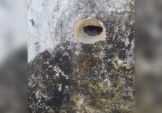 Os disparos foram efetuados no muro e portão da casa do sargento (FOTO: Reprodução/WhatsApp)
