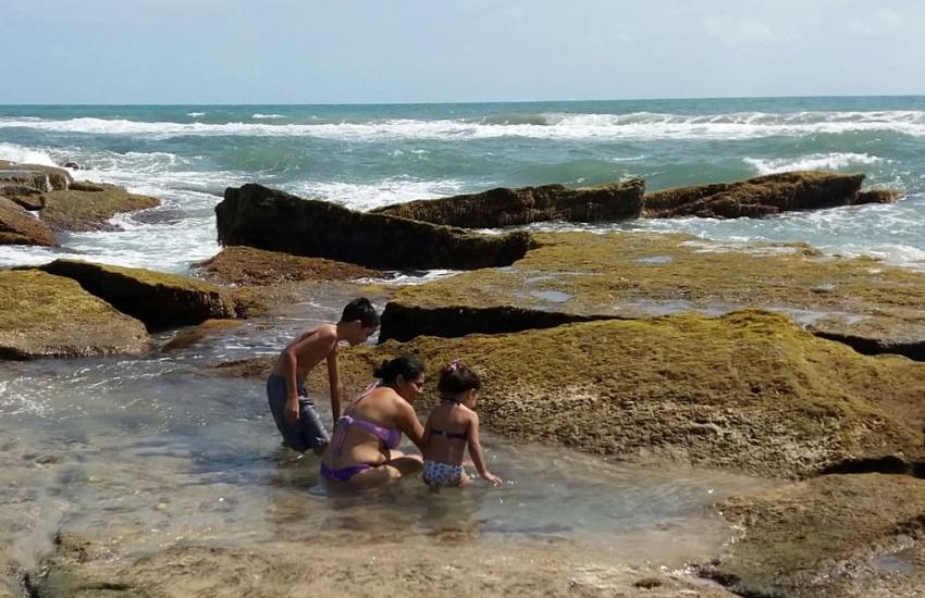 Câmara estuda convocar audiência pública para discutir manchas de petróleo no litoral nordestino