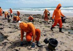 Equipes da Semace realizaram limpeza na Praia da Sabiaguaba nesta quinta-feira (FOTO: Reprodução/Semace)