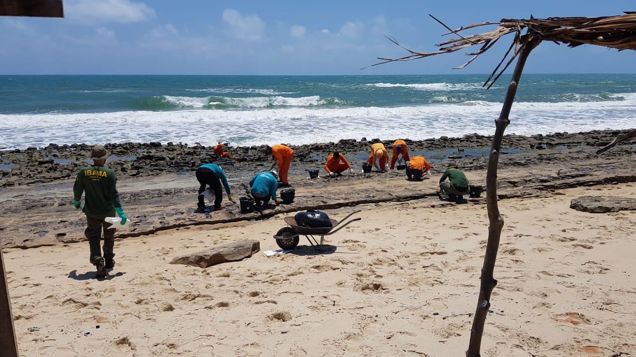 Operação emergencial já percorreu as praias do Futuro, Caça e Pesca, Titanzinho, Cofeco e Sabiaguaba