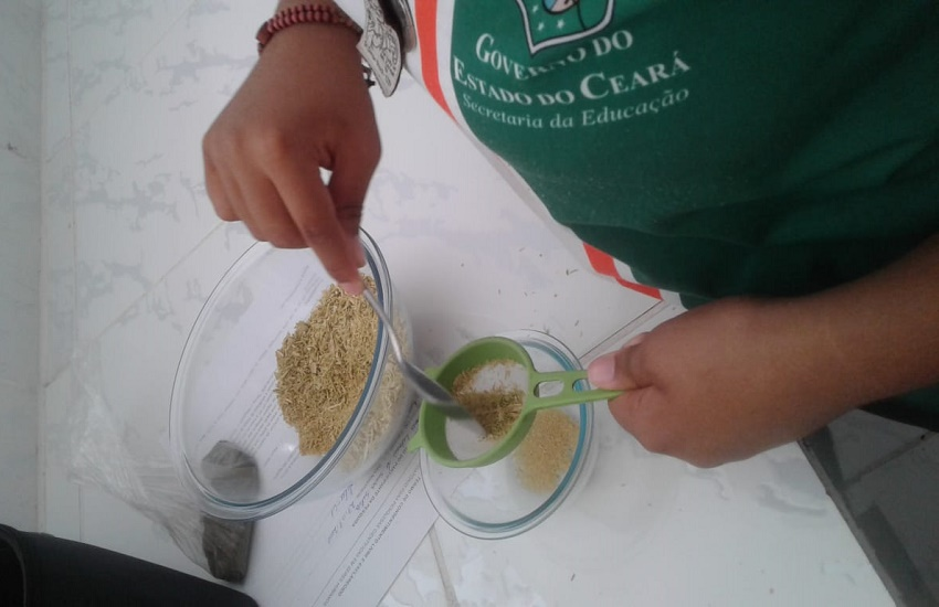 Estudantes desenvolvem pó para higiene bucal com base no pó de juá, hortelã e cravo