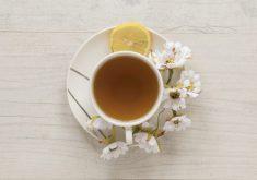 Os chás podem ser tomados quentes ou gelados (FOTO: Reprodução/Freepik)