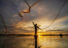 Pelo menos 8.370 pescadores e marisqueiras de 17 municípios do Ceará já foram beneficiados (FOTO: Reprodução/Freepik)